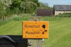 Rosebud Meadow View 2